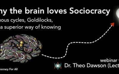 Sociocracy and the brain