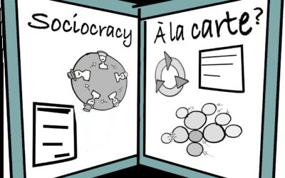 Sociocracy a la carte?